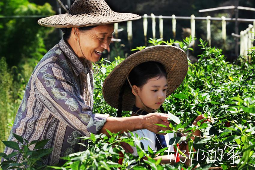 奶奶的家11月23日飙泪上映重温祖孙亲情感念儿时记忆